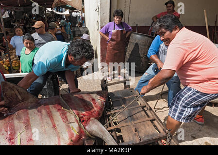Delivery of a shark to the fish department of the Mercado Principal in San Francisco de Campeche, Mexico - Stock Photo