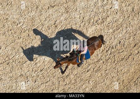 Reiter mit Schatten - Stock Photo