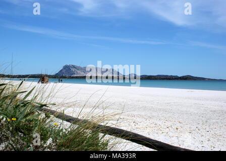 La Cinta beach, San Teodoro, Sardinia, Italy - Stock Photo