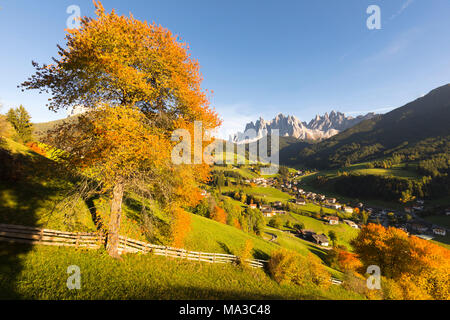 a view of Villnössertal (Val di Funes) with hot autumnal colors, Bolzano province, South Tyrol, Trentino Alto Adige, Italy - Stock Photo