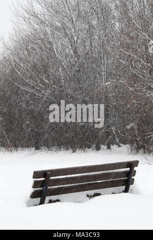 Park Bench in Deep Snow - Stock Photo