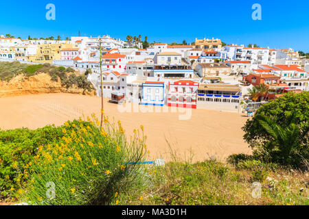 Yellow spring flowers in foreground and view of beach in Carvoeiro village with colorful houses on cliff, Algarve region, Portugal - Stock Photo