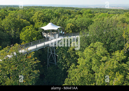 The treetop walkway in the Hainich National Park, Thuringia, Germany - Stock Photo