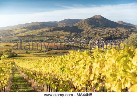 View of Frankweiler, Rhineland-Palatinate, Germany - Stock Photo