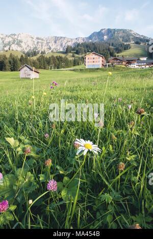 The alpine meadow in front of the 'Mattlihüs' hotel in Oberjoch in the Allgäu region of Germany - Stock Photo