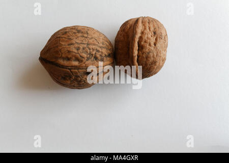 Two isolated walnut on a white background. - Stock Photo