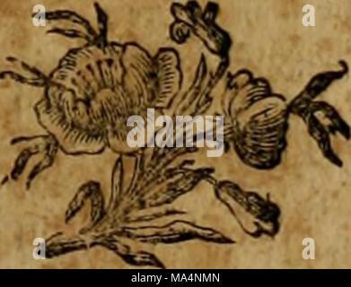 . Encyclopédie méthodique : Histoire naturelle - Stock Photo