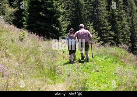 Father and son on a hike in the Pinzgauer Berge (mountains) - Stock Photo
