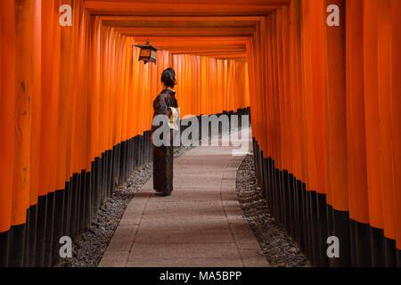 Asia, Japan, Nihon, Nippon, Kyoto, Senbon Torii Fushimi Inari Taisha Shrine - Stock Photo