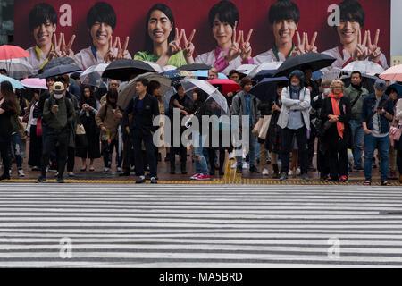 Asia, Japan, Nihon, Nippon, Tokyo, Shibuya Crossing - Stock Photo