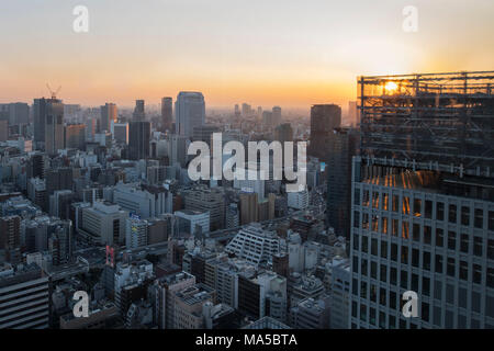 Asia, Japan, Nihon, Nippon, Tokyo, city overview, Hamamatsucho stadium, view from Tokyo World Trade Center Stock Photo