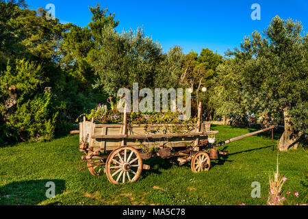 Croatia, Dalmatia, Sibenik, Solaris Beach Resort, Dalmatian Ethno village, cart - Stock Photo