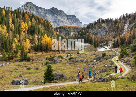 Walking tourists at the Pozzoi mountain range Europe, Italy, Trentino Alto Adige, Trento district, Non Valley, Ville d'Anaunia - Stock Photo