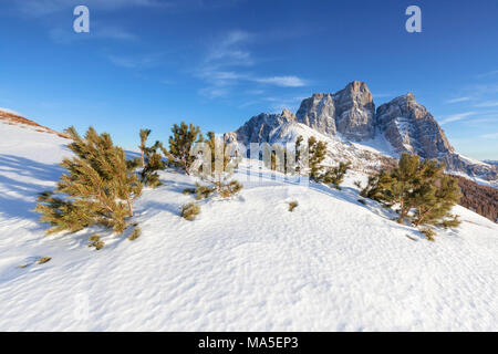 North-west wall of the mount Pelmo from Alpe Prendera in winter, Col Roan, Dolomites, Borca di Cadore, Belluno, Veneto, Italy - Stock Photo