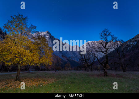 Eng, Riss Valley, Vomp, Schwaz district, Tyrol, Austria, Europe. Sycamore maple in autumn colors with the Mount Spritzkar - Stock Photo