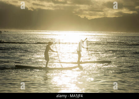 Stand up paddlers working out at sunset, Papeete, Tahiti, French Polynesia - Stock Photo