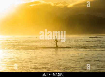 Stand up paddlers  working out at sunset with Moorea in the background, Papeete, Tahiti, French Polynesia - Stock Photo