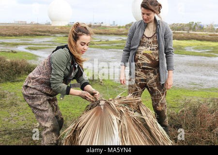 Predator Deterrents. Girl Scout troop member (left) with FWS biologist Lara Drizd working on removing the duct tape from the predator deterrents on the top of the nest. - Stock Photo