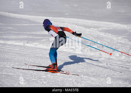 group of male skiers going uphill front view during Championship on cross country skiing . - Stock Photo