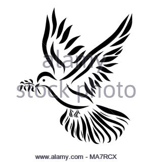 A flying dove with a twig in its beak - Stock Photo