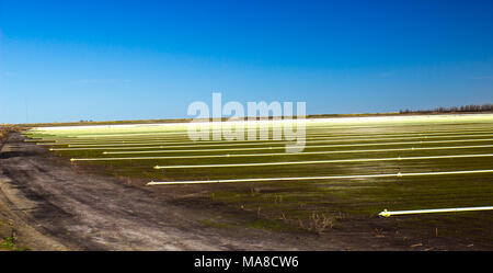 Rows Of Irrigation Sprinklers & Pipes On Open Field - Stock Photo
