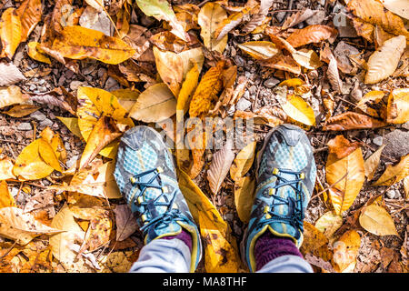 Shoes, fallen autumn brown orange golden many leaves on ground with woman's feet flat lay top view down in Harper's Ferry, West Virginia - Stock Photo