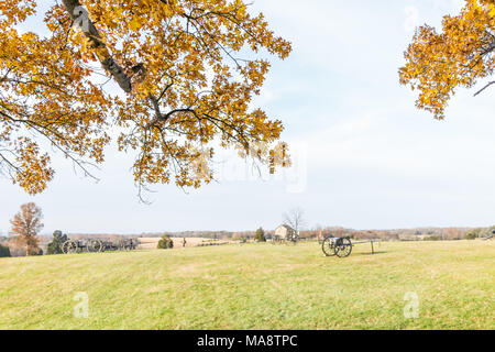 Old cannon in Manassas National Battlefield Park meadow field in Virginia where the Bull Run battle was fought, golden yellow foliage on tree framing  - Stock Photo