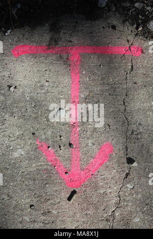 Civil engineering and construction pink arrow and line to delineate temporary markings with spray paint. - Stock Photo
