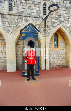 Soldier in Queen's Guard at Windsor Castle, England, with red uniform and traditional black bearskin cap or busby standing to attention, Windsor, UK - Stock Photo