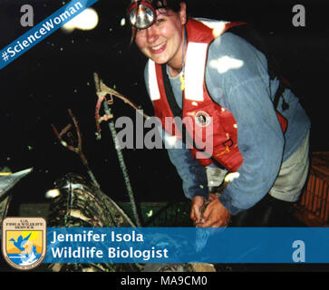 Jennifer Isola, #sciencewomen. Women in Wildlife  March is Women's History Month and we want to highlight some of the amazing women here at the US Fish and Wildlife Service on our social media sites.  Name: Jennifer Isola  Title: Wildlife Biologist  Duty station: Sacramento NWR Complex  Where did you go to school: Humboldt State University  What did you study: Wildlife Management  How did you get interested in conservation?  I've always loved being outside.  As a kid, I spent countless hours at the nearby creek.  I would save stranded tadpoles from rain puddles behind my house, then grow them - Stock Photo