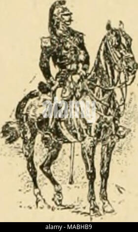 . Dressage méthodique du cheval de selle d'aprés les derniers enseignements . - Stock Photo