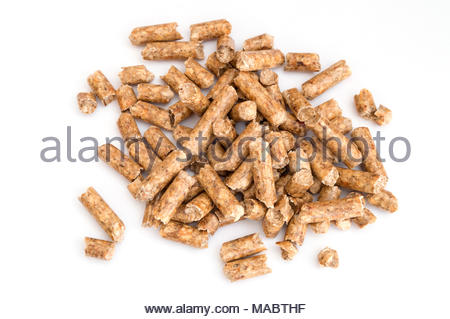 group of pellets on white background - Stock Photo