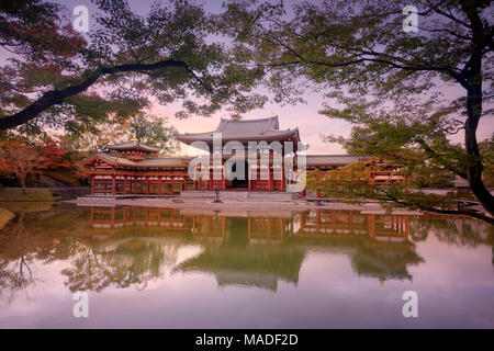 Phoenix Hall, Hoodo or Amida Hall, of Byodo-in, Jodo-shiki garden with a pond in a beautiful surreal sunrise autumn scenery framed by Japanese maple t - Stock Photo