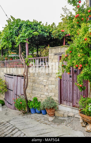 Pomegranate tree with fruit nestling beside double wooden doors which are closed.  Shutting off the entrance to a walled garden. - Stock Photo