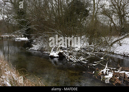 Wintry scenes in Rooksbury Mill Local Nature Reserve, Andover, Hampshire, England - Stock Photo