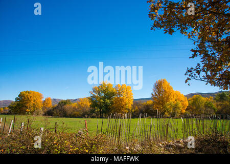 Autumn landscape. Sierra de Guadarrama National Park, Madrid province, Spain. - Stock Photo