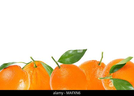 Isolated fruits background. Orange fruit with leaf background. - Stock Photo