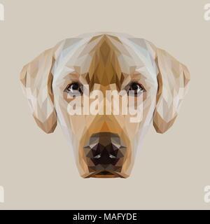 Labrador Retriever low poly design. Triangle vector illustration. - Stock Photo