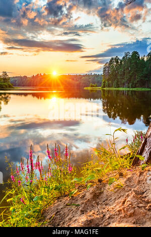 Beautiful sunset over lake - Stock Photo