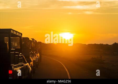 Sunrise at the beginning of car Safari in Yala National Park in Sri Lanka - Stock Photo