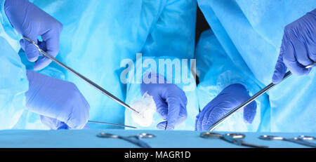 Group of surgeons at work while operating at hospital. Health care and veterinary concept - Stock Photo