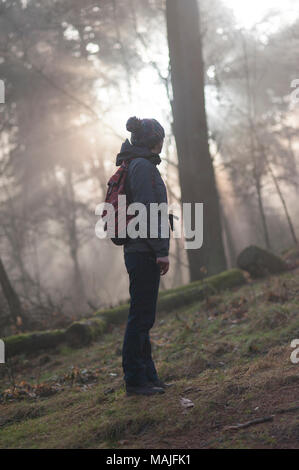 A woman observes the sun rising through the trees in a forest. - Stock Photo