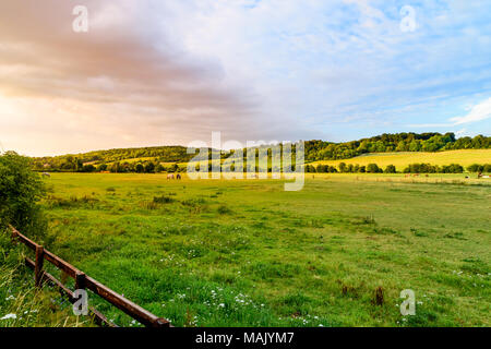 A summer evening in the Hambleden Valley in the Chilterns - Stock Photo