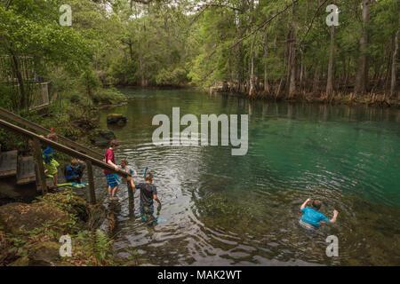 Swimming Manatee Springs State Park, Florida USA - Stock Photo