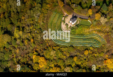 Aerial view, small chapel on the Ellerweg in the midst of vineyards, autumn, autumn leaves, Golden October, Indian Summer, Merzig, Saarland, Germany,  - Stock Photo