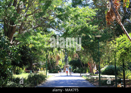 Company's Garden, a park and heritage site, created in the 1650s by European settlers, in central Cape Town, South Africa - Stock Photo