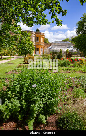 The Walled Garden in The Oxford Botanic Garden - shown in the winter ...