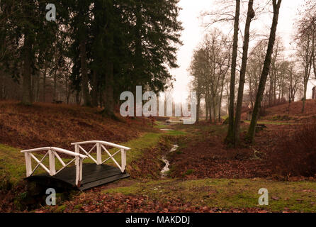 A small bridge crossing over a stream in the Swedish woods. - Stock Photo