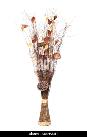 Vase with dry Branches, decorative Sticks and dried Twigs isolated on white background. - Stock Photo