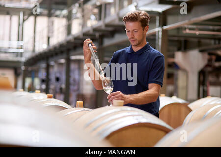 Young man testing wine in a wine factory warehouse - Stock Photo